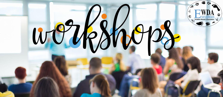 2018 Workshops EWDA